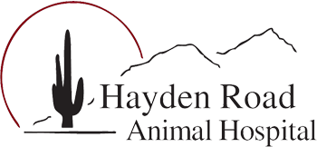 Logo for Veterinarians Scottsdale | Hayden Road Animal Hospital