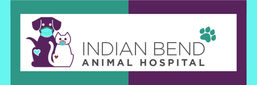 Logo for Indian Bend Animal Hospital Phoenix, Arizona