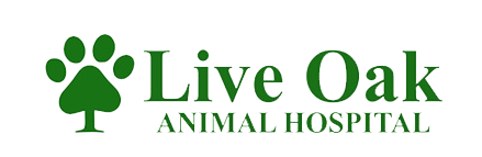 Logo for Veterinarians in Pass Christian  | Live Oak Animal Hospital