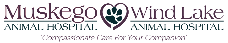 Logo for Veterinarians Muskego, Wisconsin | Muskego Animal Hospital