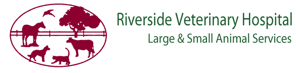 Logo for Veterinarians Lanett | Riverside Veterinary Hospital