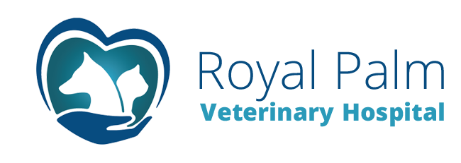 Logo for Veterinarians Coral Springs, Florida | Royal Palm Veterinary Hospital