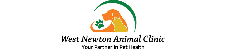 Logo for Veterinarians in West Newton  | West Newton Animal Clinic